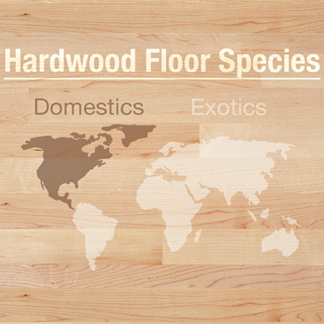 <p>Common or exotic hardwood gives different looks and benefits. Learn about some domestic and exotic wood species at <strong>0:09</strong> in the video.</p><br/>